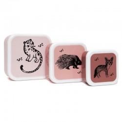 Petit Monkey - 3 śniadaniówki lunchboxy Desert Rose