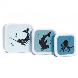 Petit Monkey - Zestaw 3 śniadaniówek lunchbox Deep Blue