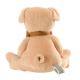 Maud N Lil Przytulanka pocieszyciel z organicznej BIO bawełny GOTS Cubby the Teddy Soft